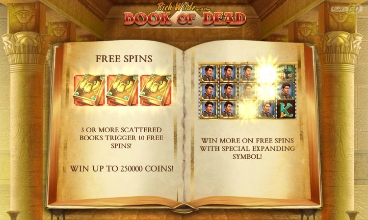 Book of dead Play n Go pokie review