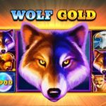 Wolf Gold pokie no deposit free spins