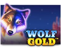 Wolf-Gold pragmatic play