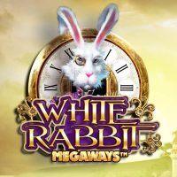 white-rabbit-200x200