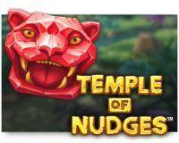temple-of-nudges-slot-review-200x160-netent