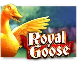 royal-goose-300x240-slot-review-Cayetano