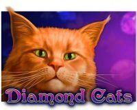 diamond-cats-200x160-slot-review-amatic
