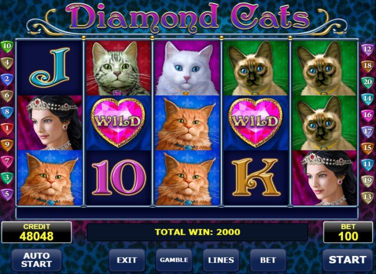 diamond-cats-slot-review-amatic-big-win