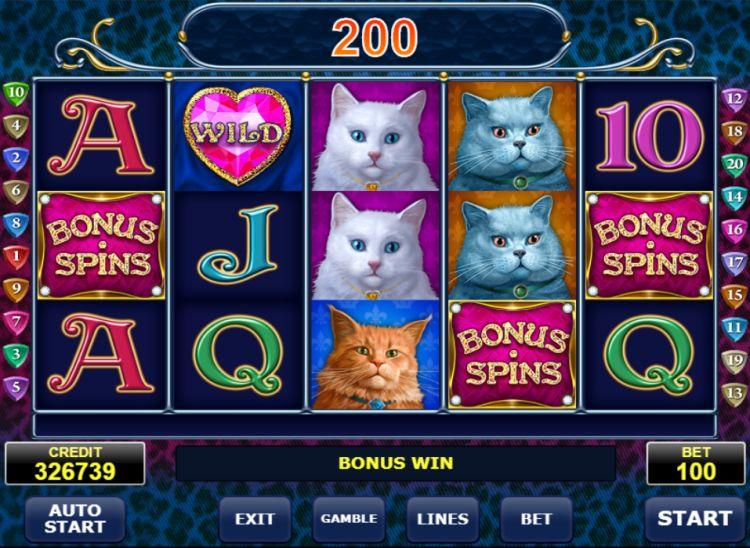 diamond-cats-slot-review-amatic-bonus