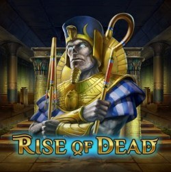 rise of dead play n go review
