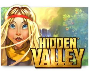 hidden-valley-logo