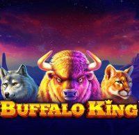 buffalo-king-555x539-slot-review-pragmatic-play-logo