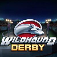 wildhound-derby-495x495-slot-review-playn-go-logo