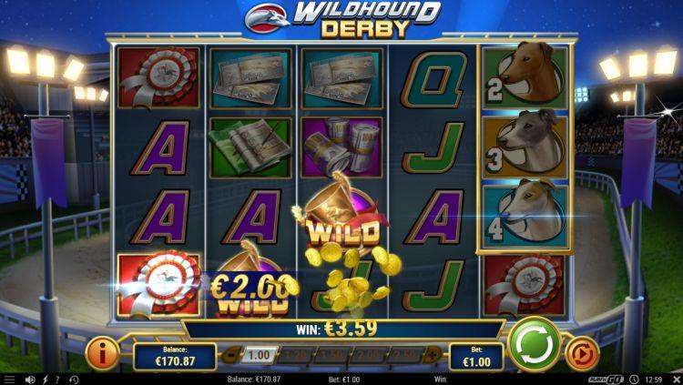 wildhound-derby-slot-review-playn-go (2)